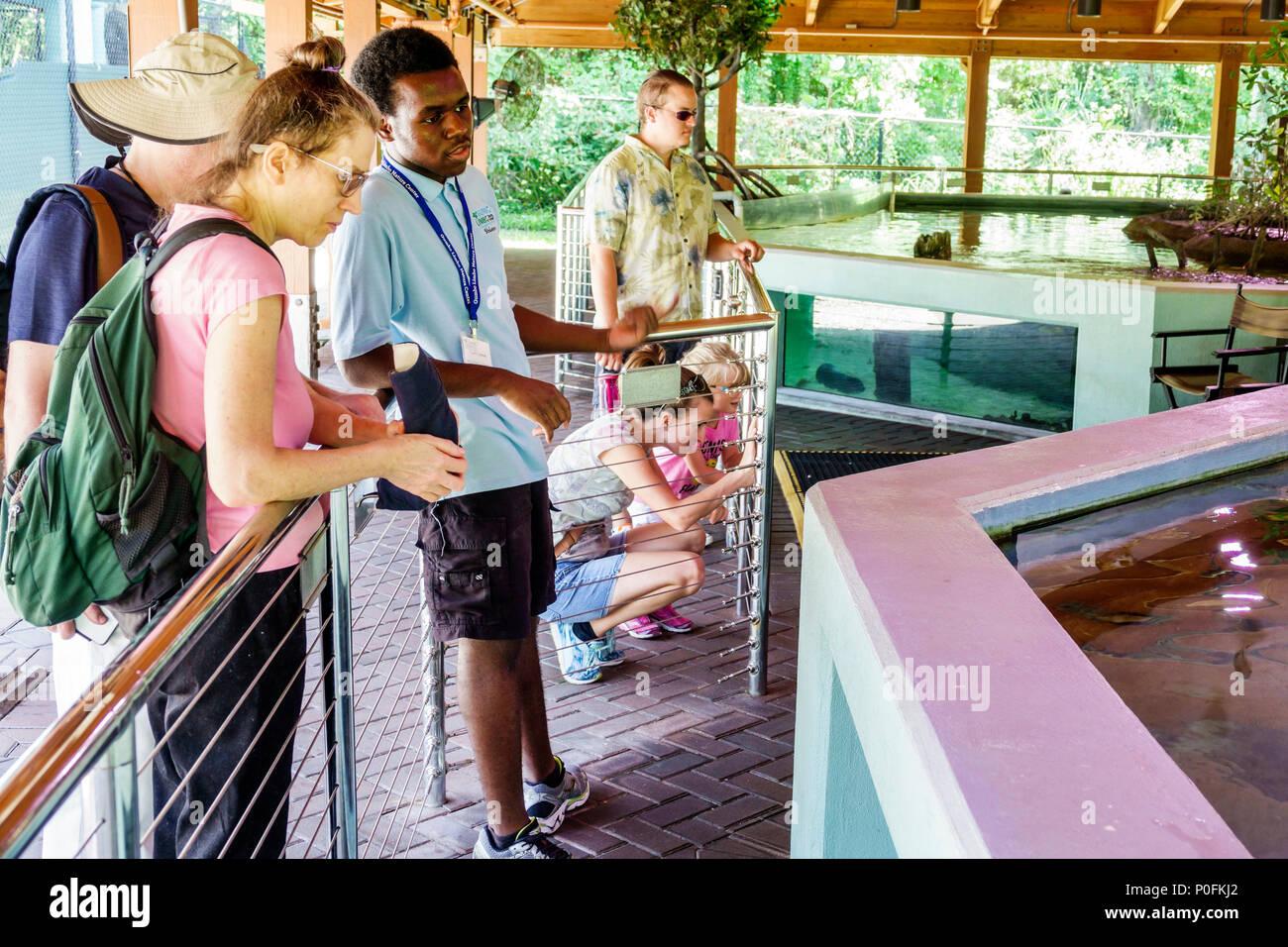 Florida Boca Raton Gumbo Limbo Nature Center Environmental Complex aquarium sea life ecosystem Black man woman boy teen student volunteer - Stock Image