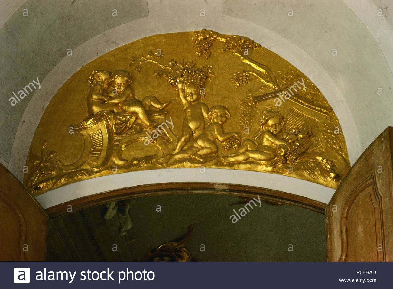 supraporte with cherubs in the white hall gilded stucco work in