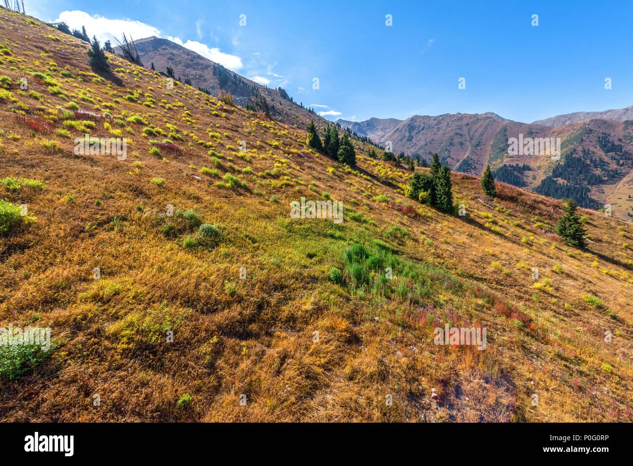 Autumn in Zaiyliskiy Alatau, Kazakstan - Stock Image