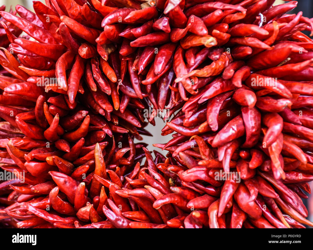 Ring of fire wreath of red, dried chili peppers from Santa Fe, New Mexico - Stock Image