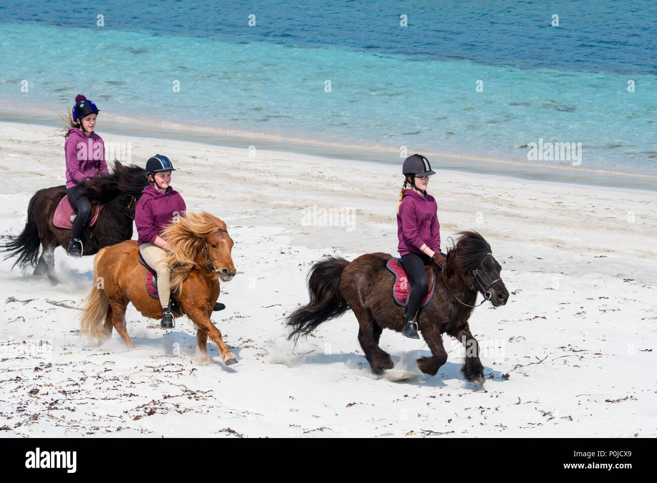 Three young girls / teenagers riding Shetland ponies on sandy beach along the Scottish coast on the Shetland Islands, Scotland, UK - Stock Image