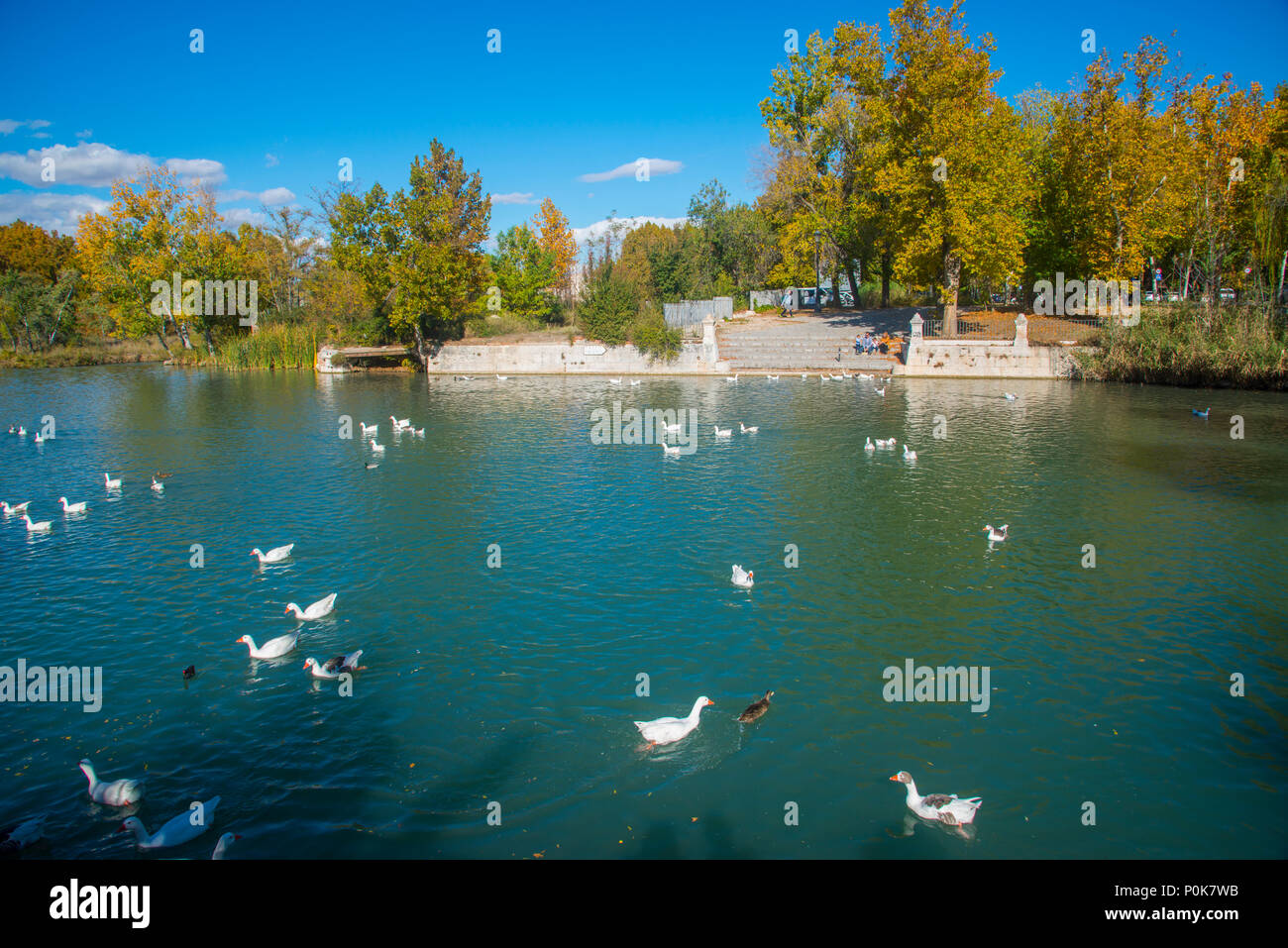 Canal of river Tajo. Aranjuez, Madrid province, Spain. - Stock Image