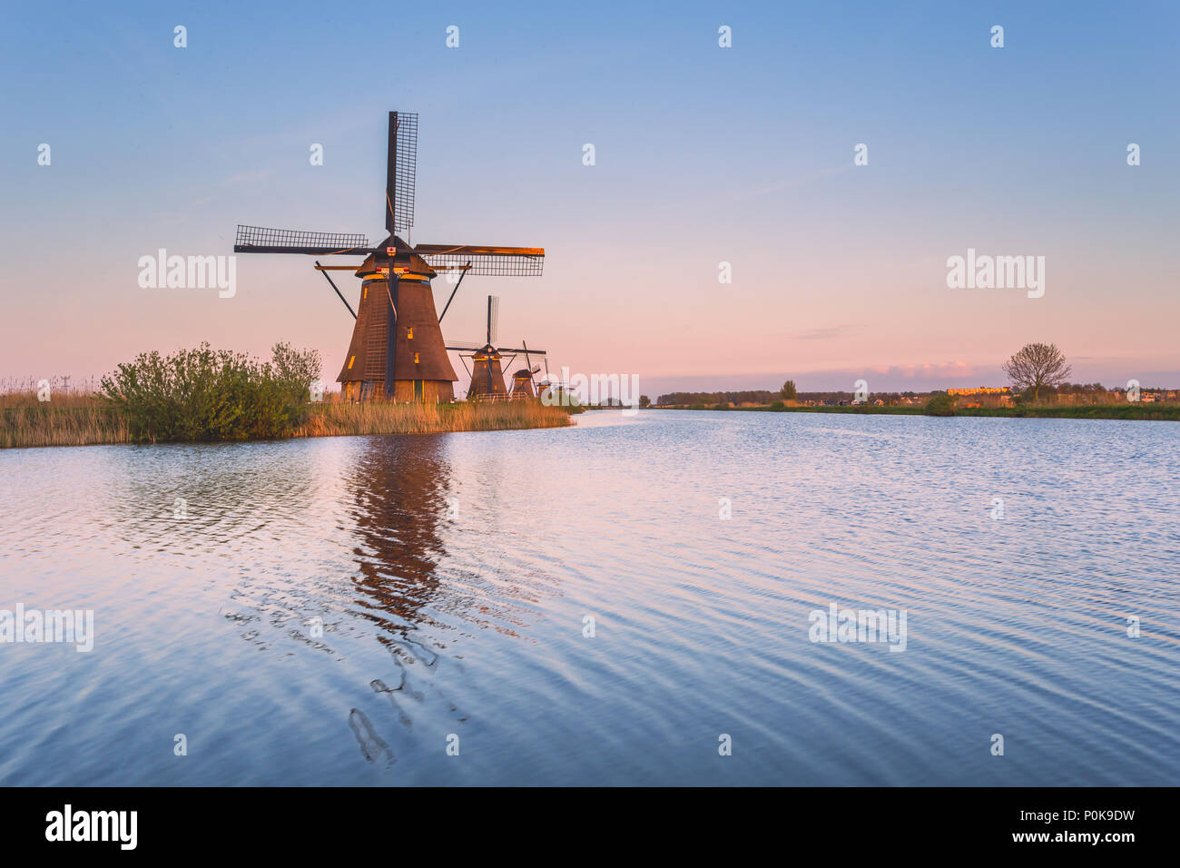Windmill reflected in the canal Kinderdijk Rotterdam South Holland Netherland Europe - Stock Image