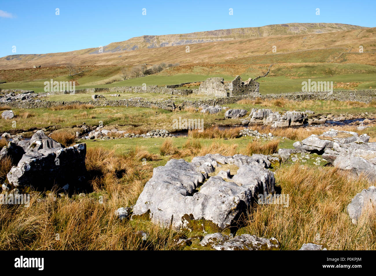 Whernside from Winterscales, Yorkshire Dales, England - Stock Image