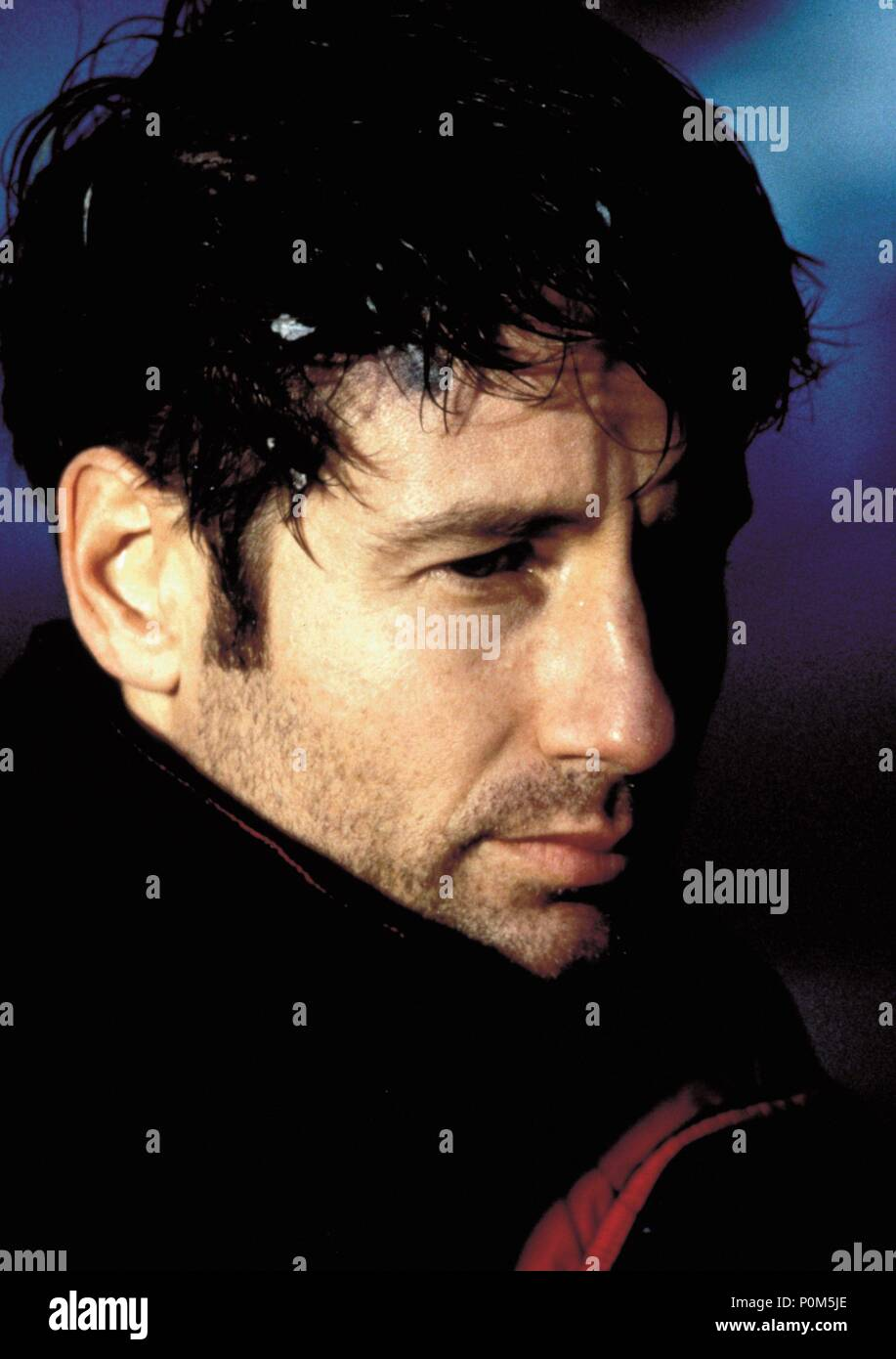 Original Film Title: X-FILES, THE.  English Title: X-FILES, THE.  Film Director: ROB BOWMAN.  Year: 1998.  Stars: DAVID DUCHOVNY. Credit: 20TH CENTURY FOX / Album Stock Photo