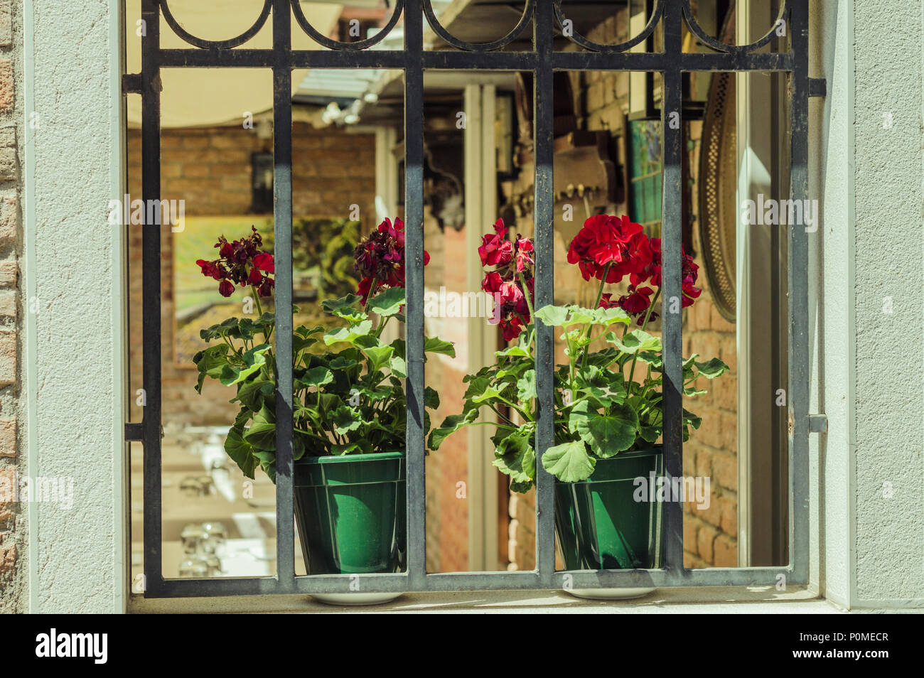 Two Flower Pots On Window Sill Outdoor Stock Photo 206974791 Alamy