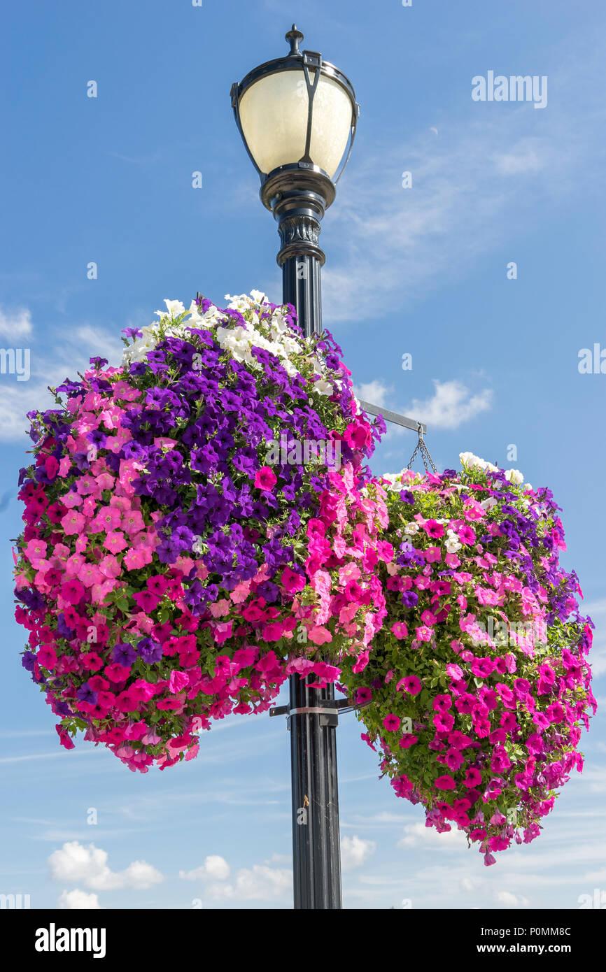 Lamp Post Hanging Flower Basket Stock Photos Amp Lamp Post