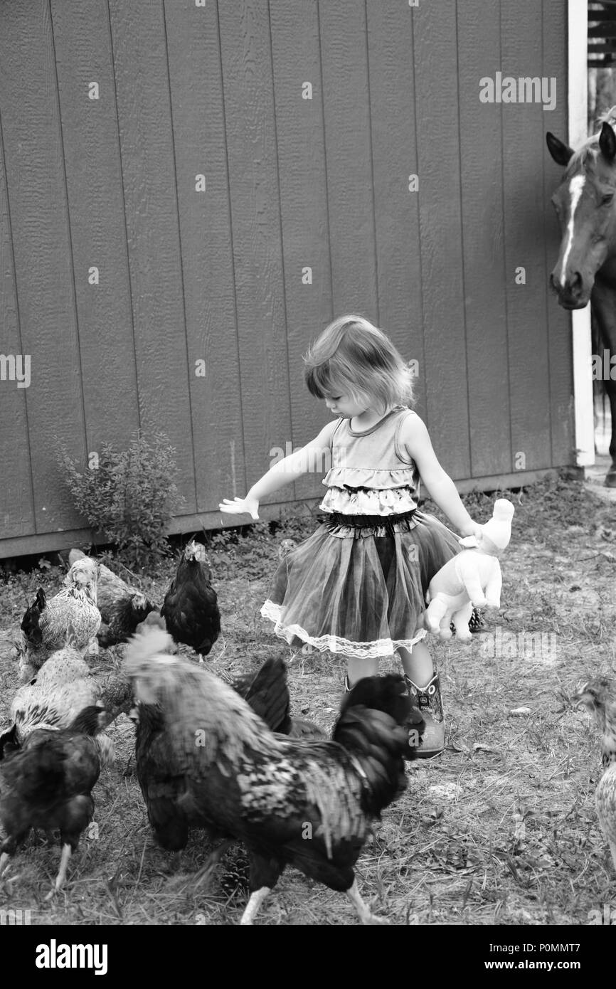 Little girl in blue dress in a farm setting. - Stock Image