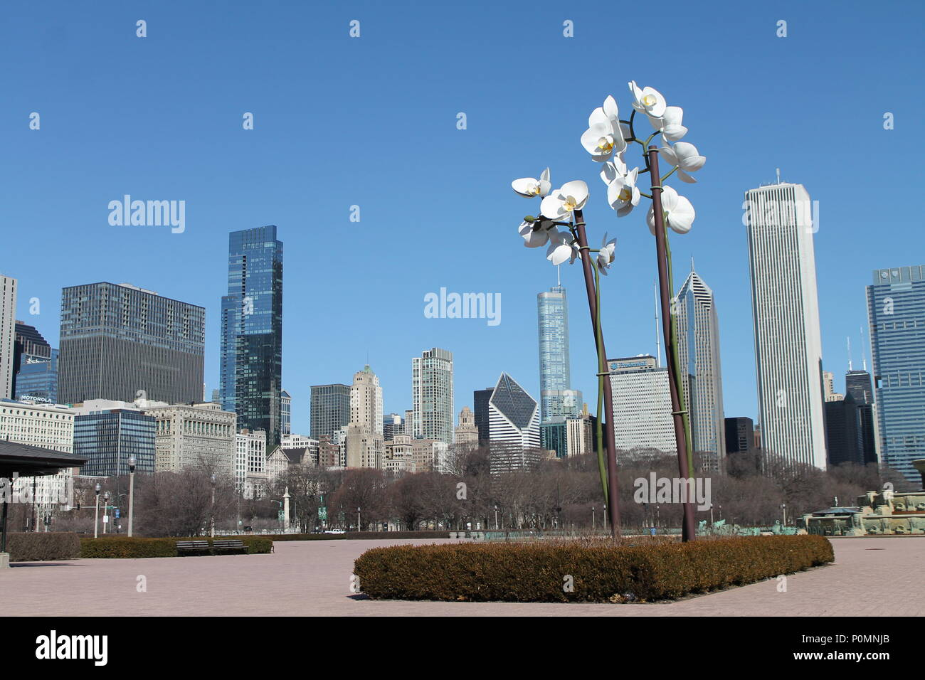 Downtown Chicago a.k.a. Windy City. - Stock Image