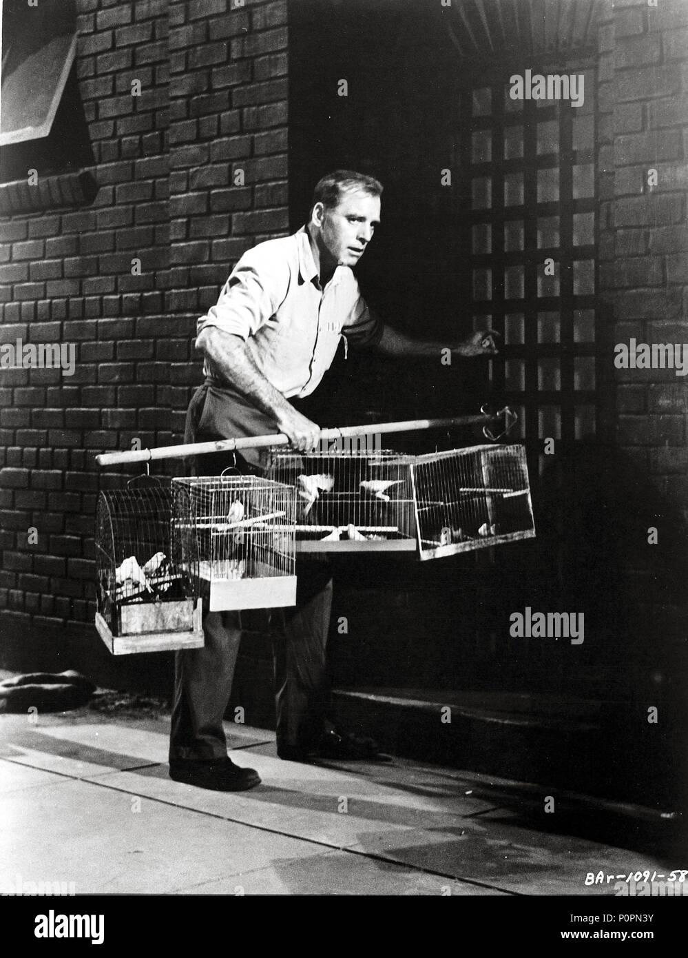 Original Film Title: BIRDMAN OF ALCATRAZ.  English Title: BIRDMAN OF ALCATRAZ.  Film Director: JOHN FRANKENHEIMER.  Year: 1962.  Stars: BURT LANCASTER. Credit: UNITED ARTISTS / Album Stock Photo