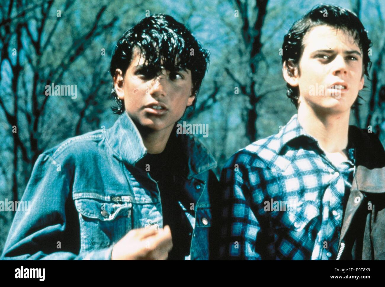 original film title the outsiders english title the outsiders