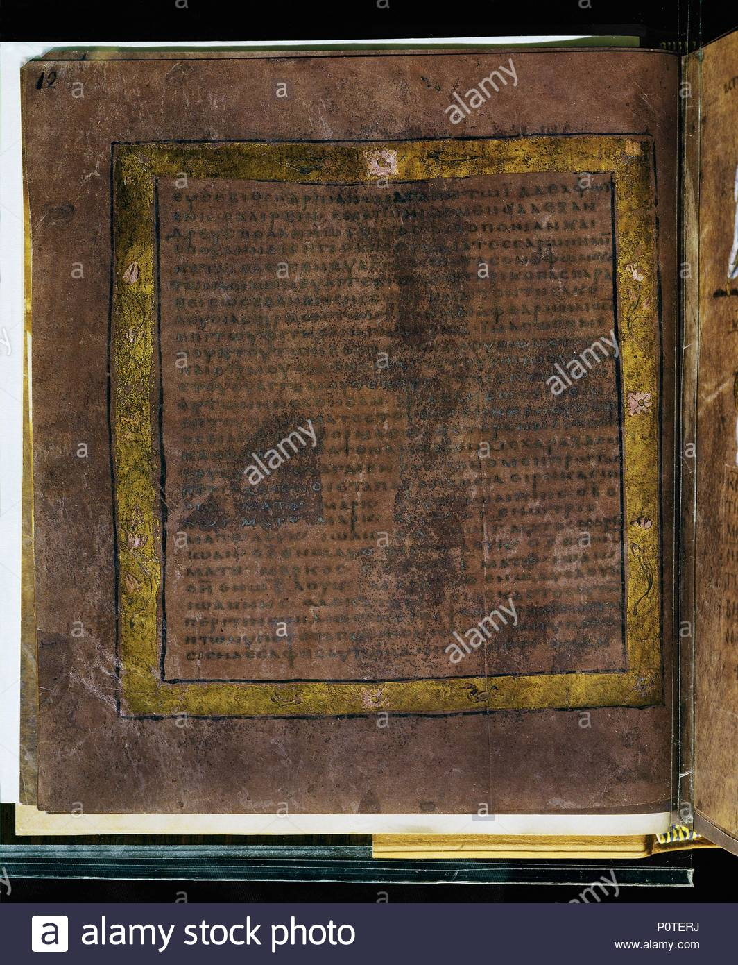 The purple Codex Rossanensis, a 6th century manuscript on puple ...