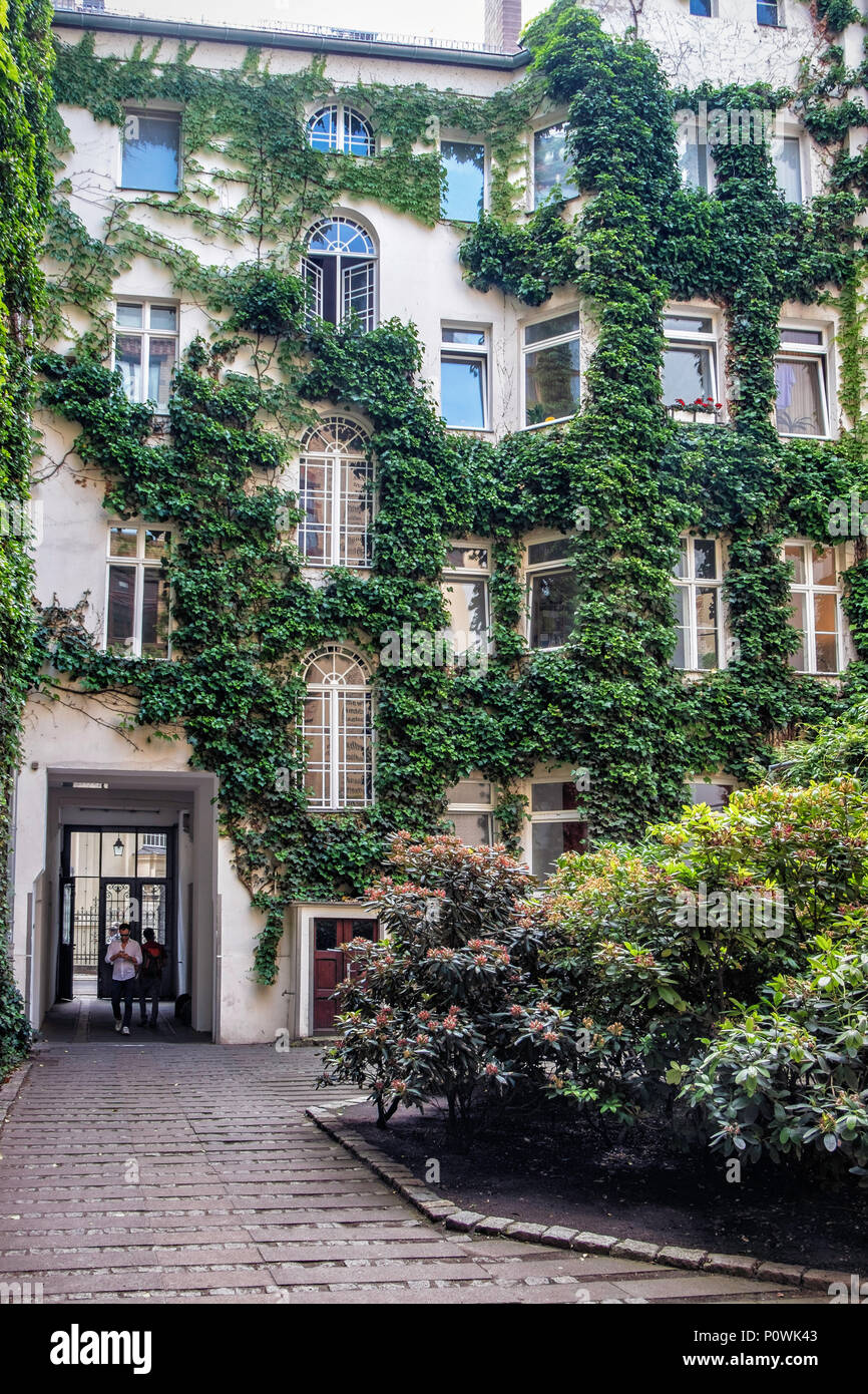 Berlin, Mitte Sophie-Gips-Höfe Inner Courtyard and ivy covered building houses offices & apartments. Historic building in Sophienstrasse - Stock Image