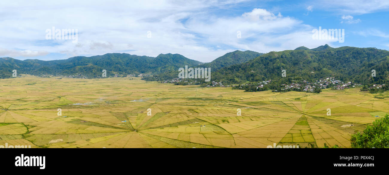 Panoramic view of spider web-like rice fields ('lingko') in Cancar Village near Ruteng, Manggarai Regency, island of Flores, Indonesia. - Stock Image