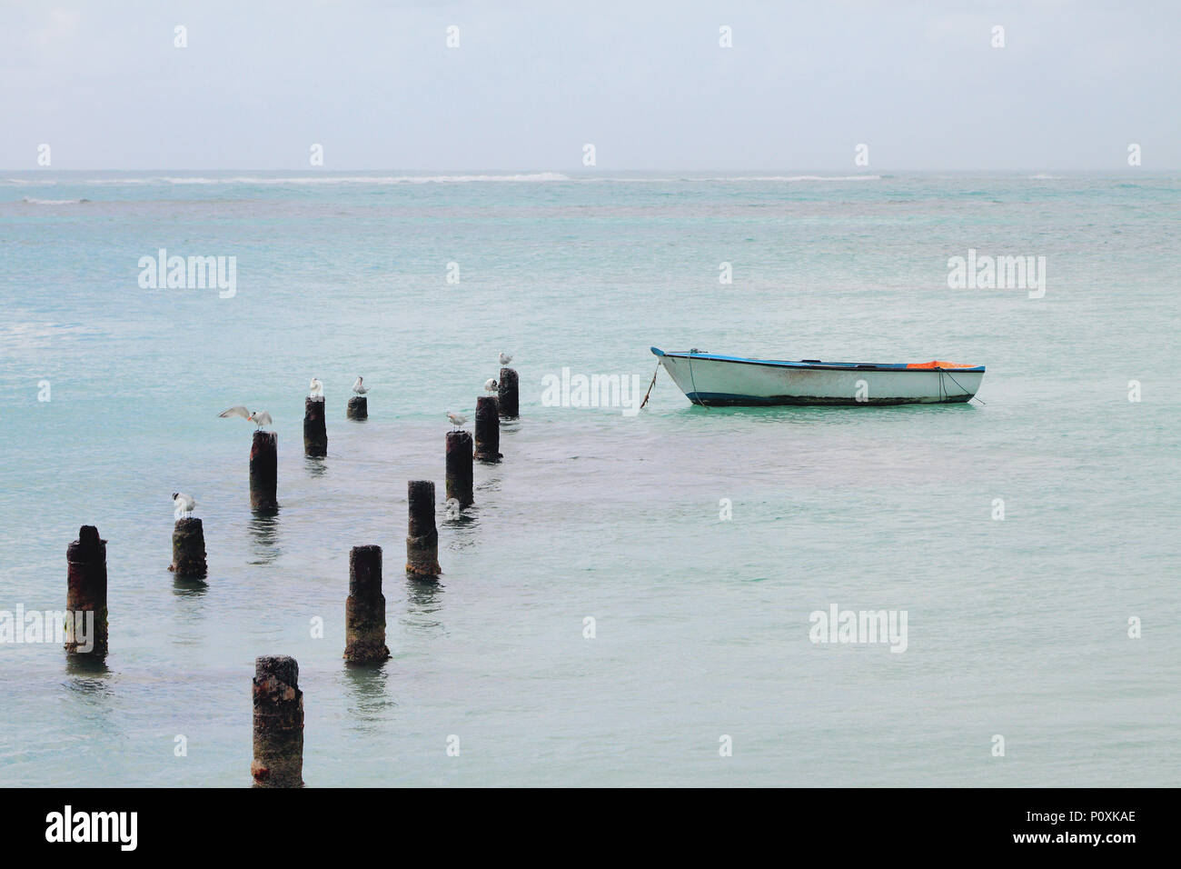 Support of destroyed pier, seagulls and boat. Anse de Sent-An, Pointe-a-Pitre, Guadeloupe - Stock Image