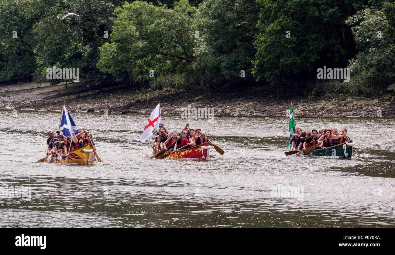 Totnes, Devon, 10th June 18 Competitors take on the River Dart in the Totnes Canoe Festival, Devon. Over the last 7 years the festival has raised £65,000 for charity.  South West Photos/Alamy Live News - Stock Image