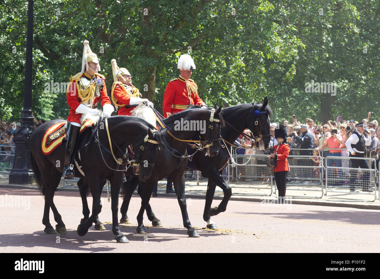 Trooping the Colour, Former Chief of Defence staff Lord Guthrie falls from horse during ceremony Stock Photo