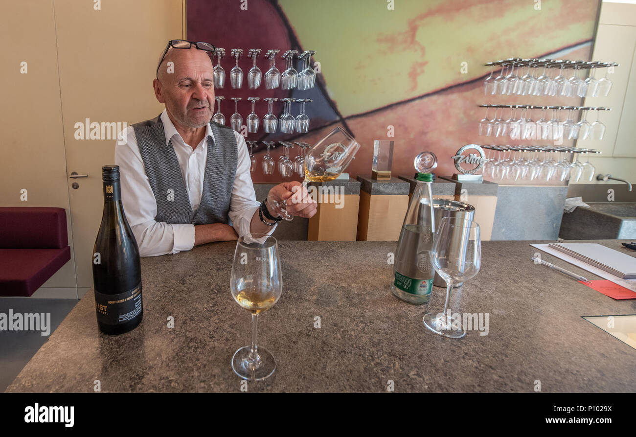 Horst Sauer, Sauer winery, Escherndorf, Germany - Stock Image