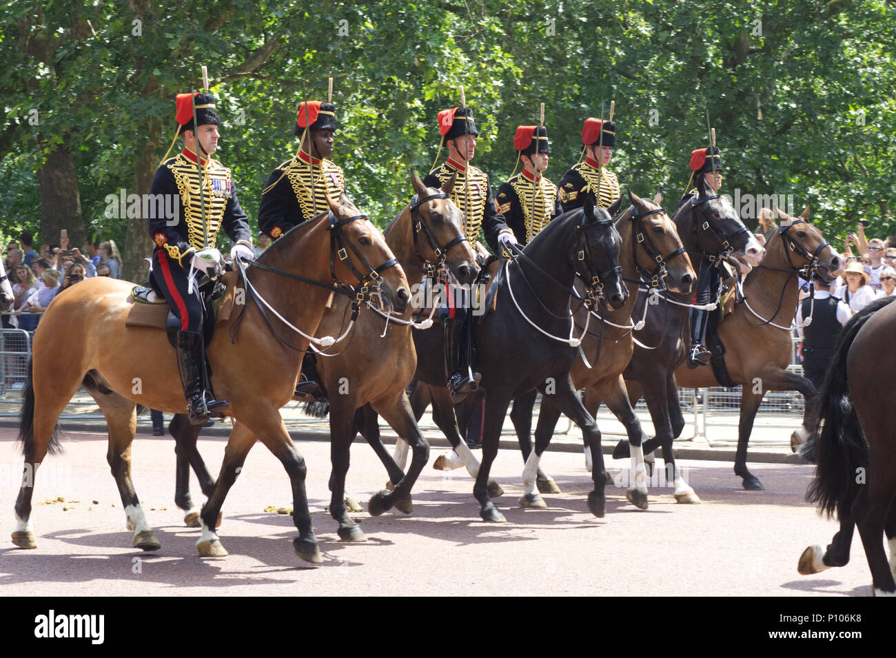 The King's Troop, Royal Horse Artillery, ceremonial unit of the British Army - Stock Image
