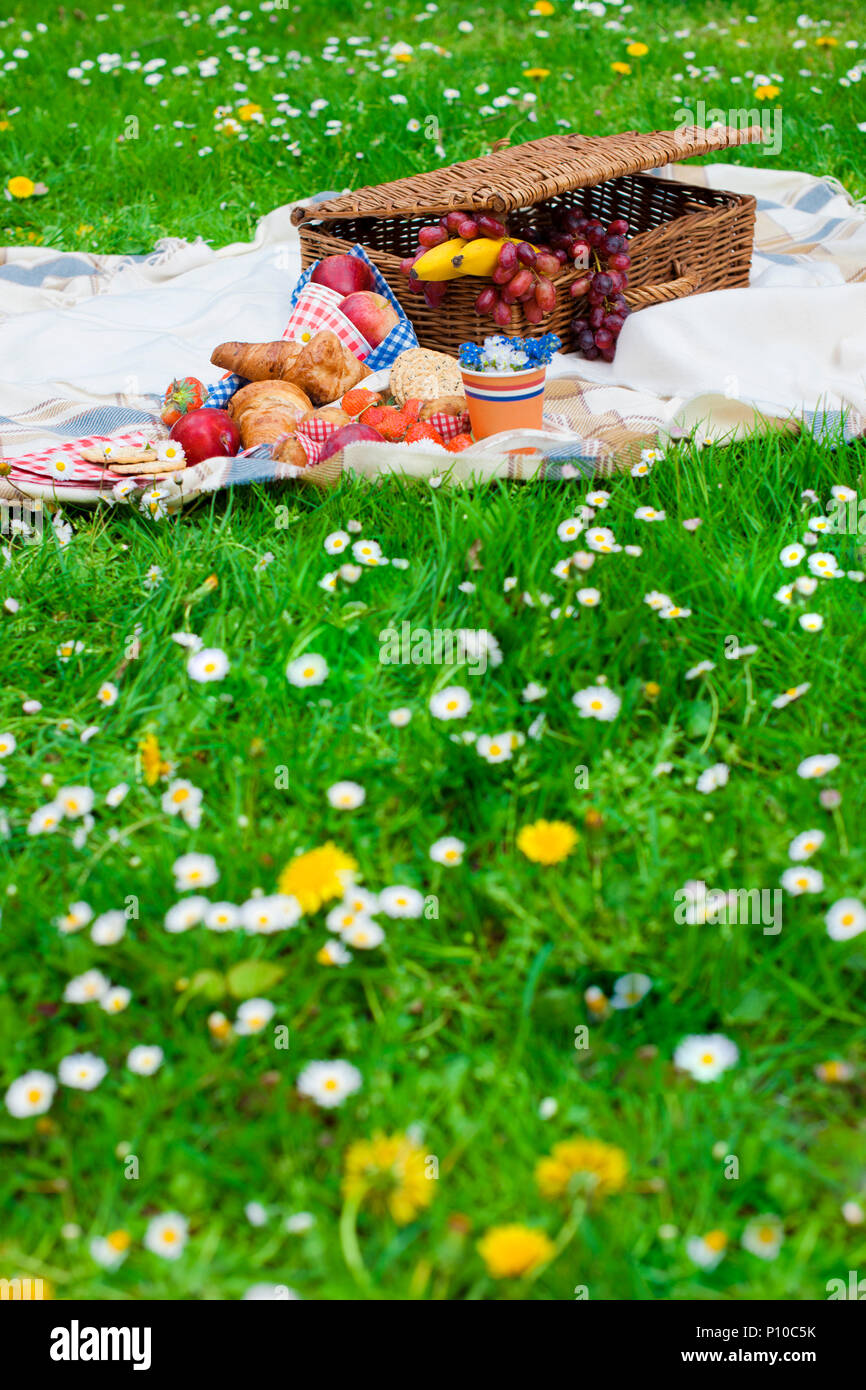 Picnic Basket And Food Green Meadow With Flowers Spring In The