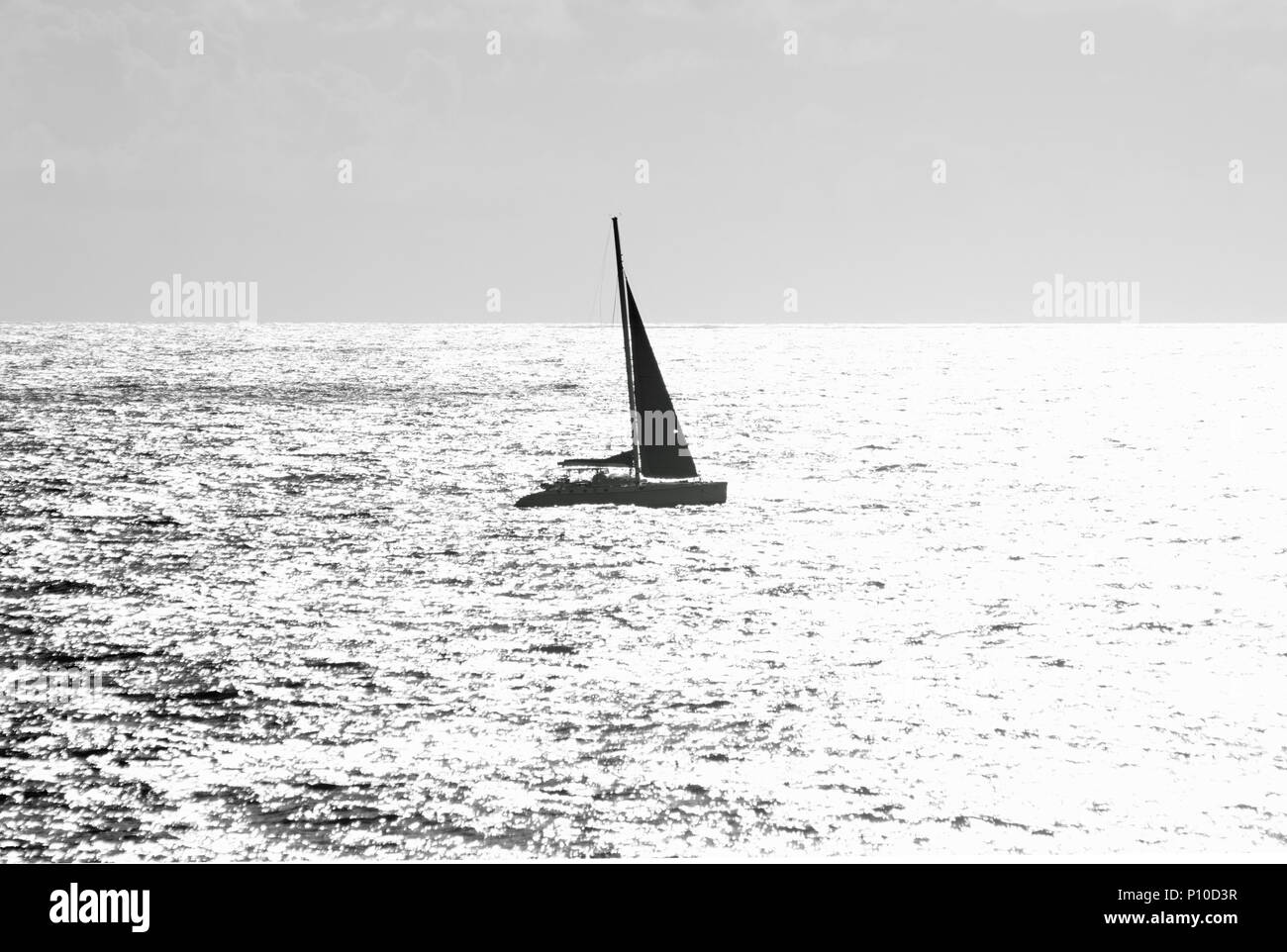 Silhouetted  Yacht Making Way Accross the Sparkling Ocean - Stock Image