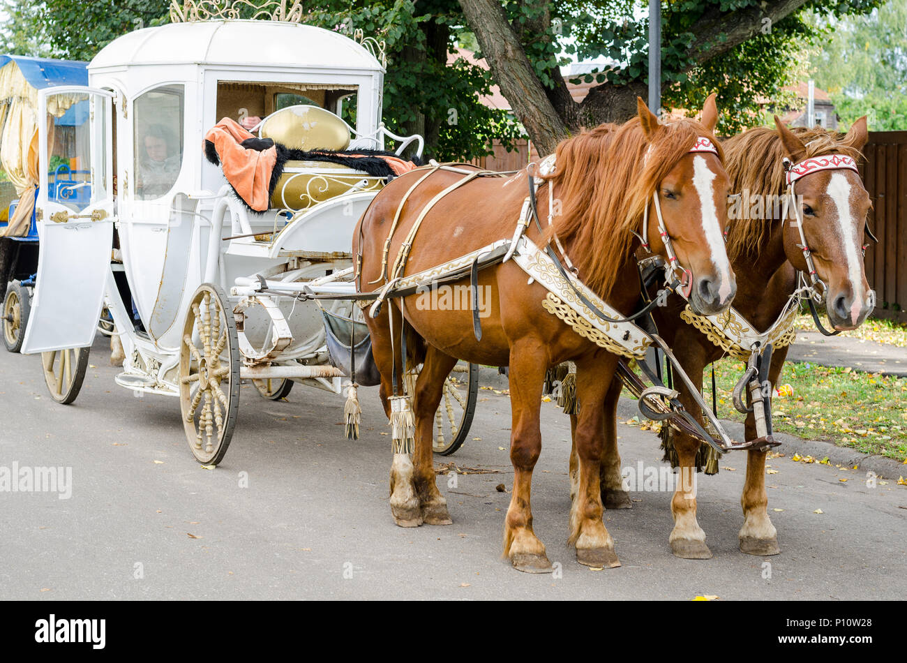 Horse with a carriage for walking around the city of Suzdal. - Stock Image