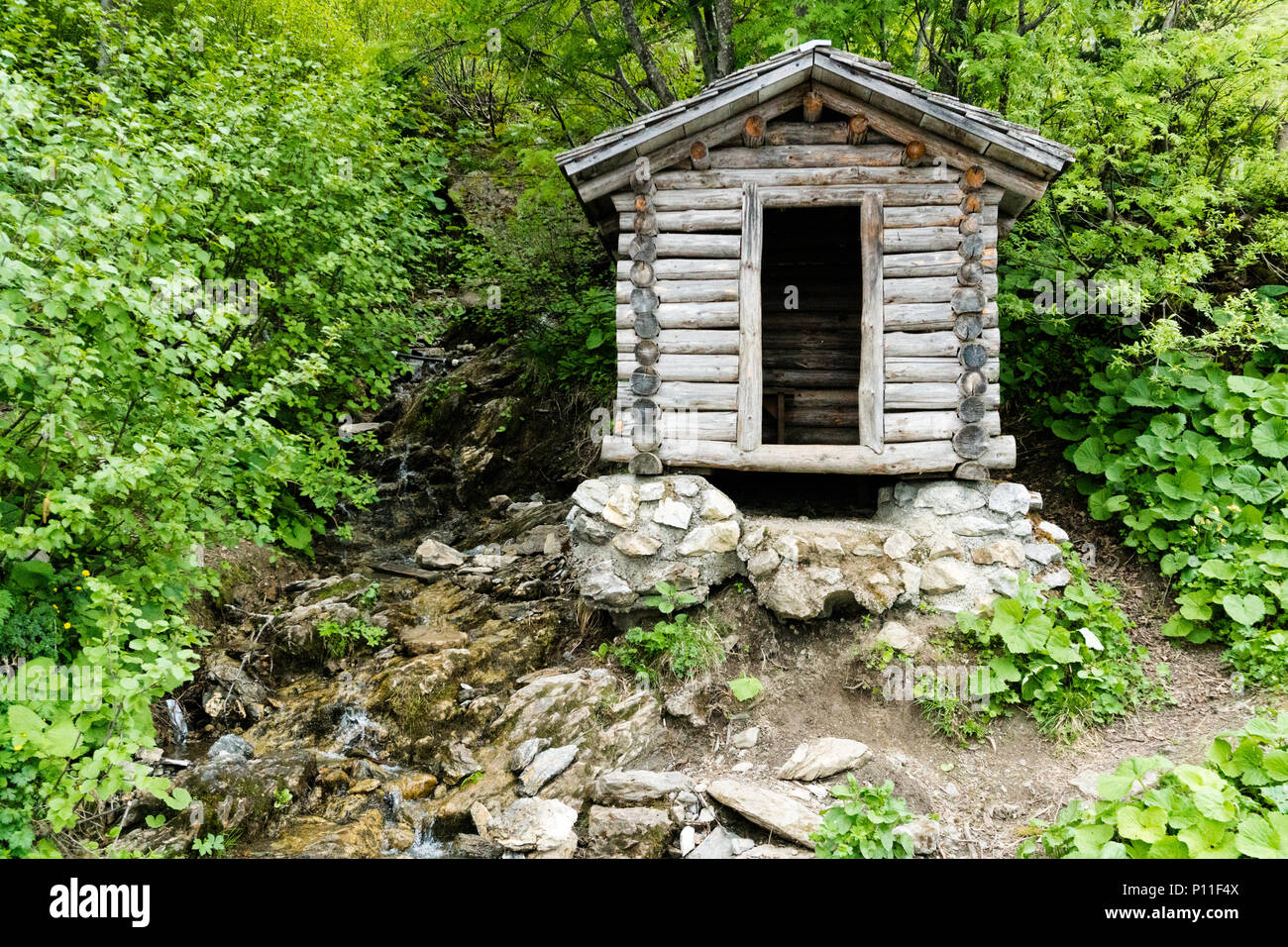 tiny wooden mountain cabin in dense lush green summer forest with a small creek beside it - Stock Image