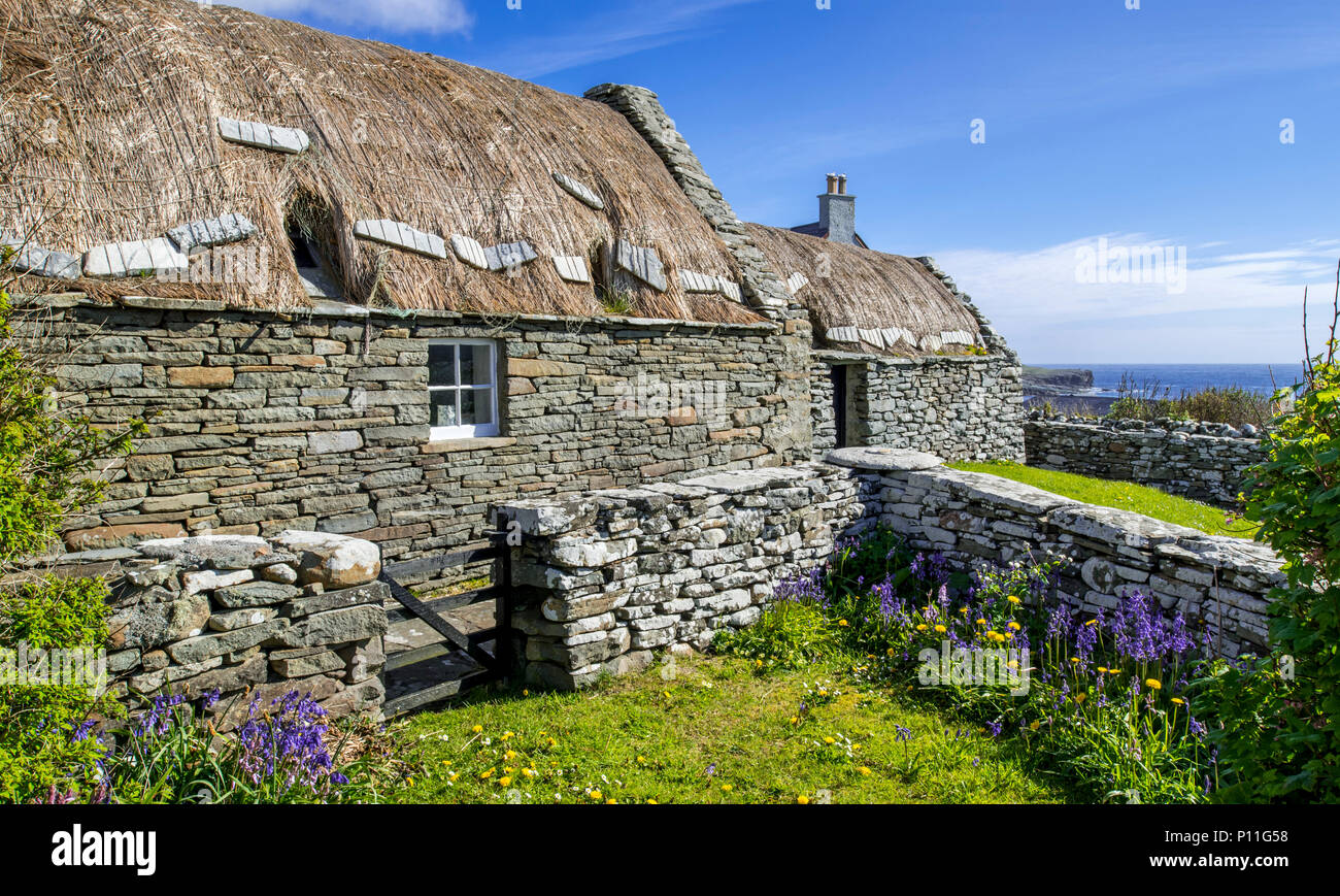 Croft House Museum / Crofthouse Museum, restored straw-thatched cottage at Boddam, Dunrossness, Shetland Islands, Scotland, UK - Stock Image
