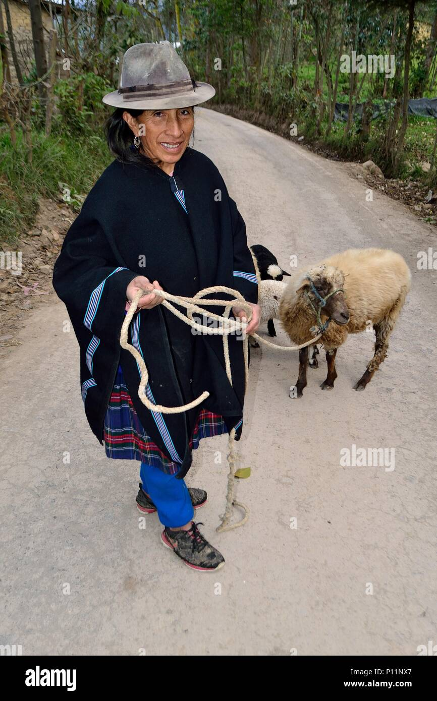 Shepherd in SALALA ' Las Huaringas '  - HUANCABAMBA.. Department  of Piura .PERU                  - Stock Image