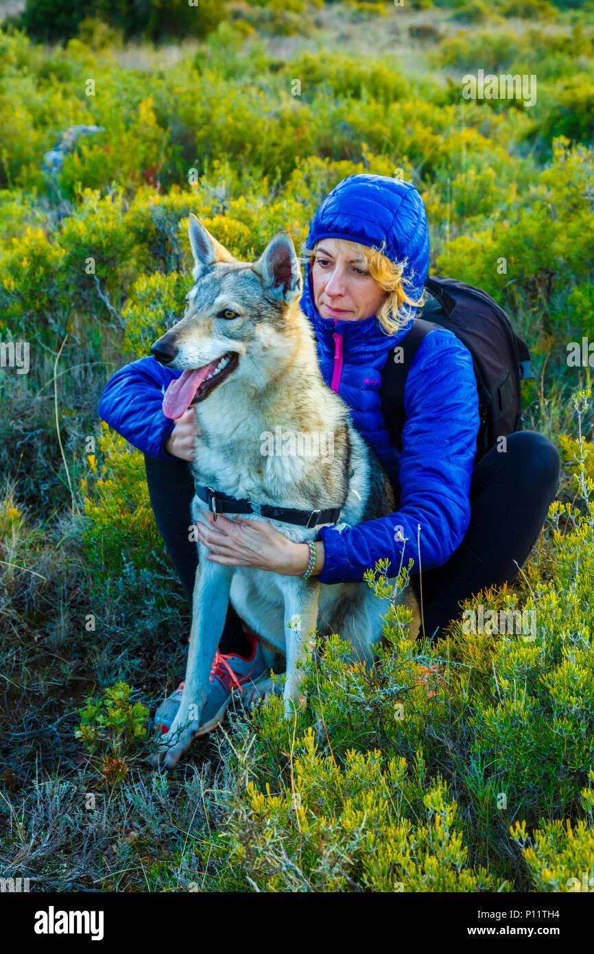 Woman in outdoor with a Czechoslovakian wolfdog. Tierra Estella County, Navarre, Spain, Europe. - Stock Image