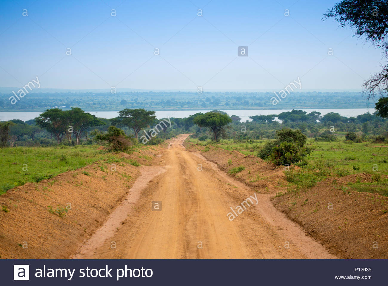 Murchison Falls National Park, Safari landscapes, Uganda, Africa - Stock Image