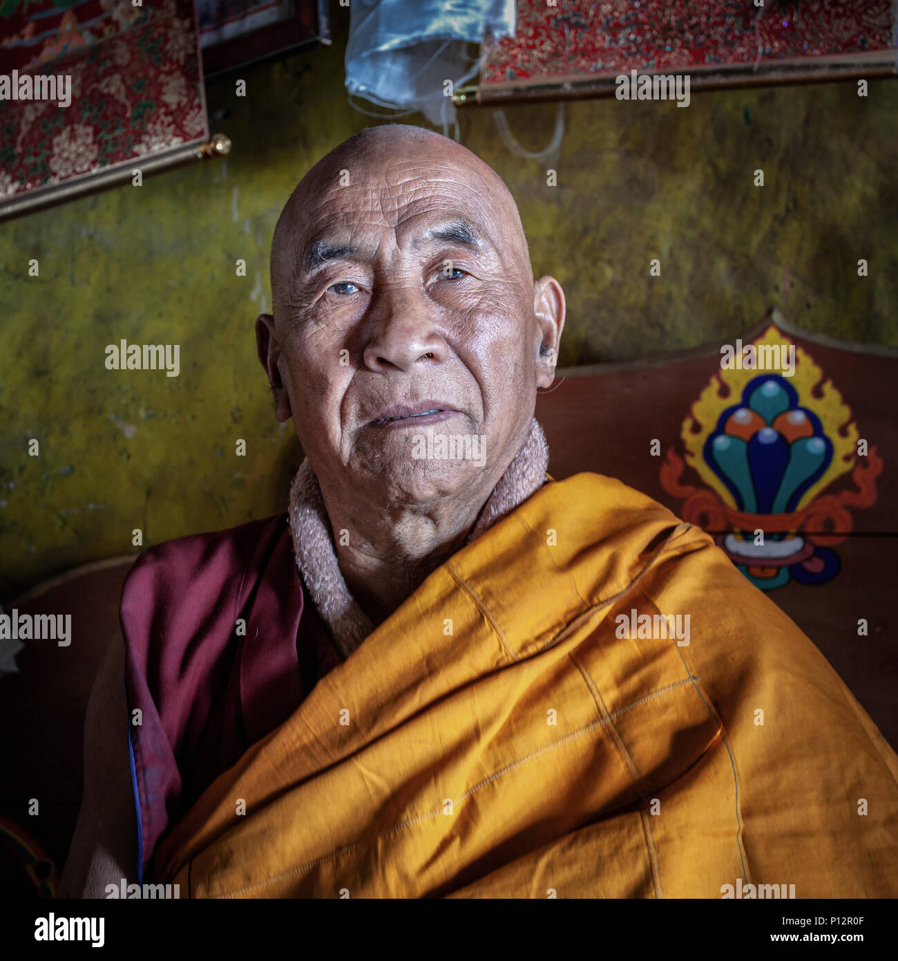Elderly monk from Galden Namgey Lhatse Monastery, Tawang, Arunachal Pradesh, India - Stock Image