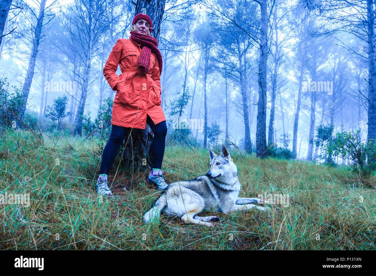 Woman in a pine grove with a Czechoslovakian wolfdog. Tierra Estella County, Navarre, Spain, Europe. - Stock Image