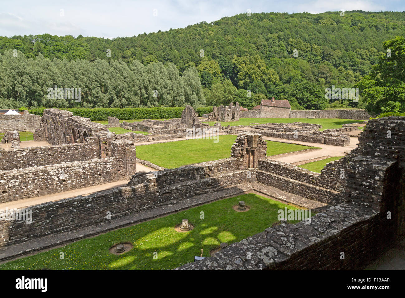 Tintern Abbey, Wales, on the banks of the River Wye. Founded by Walter de Clare, Lord of Chepstow, on 9 May 1131. The 2nd Cistercian abbey in Britain. - Stock Image