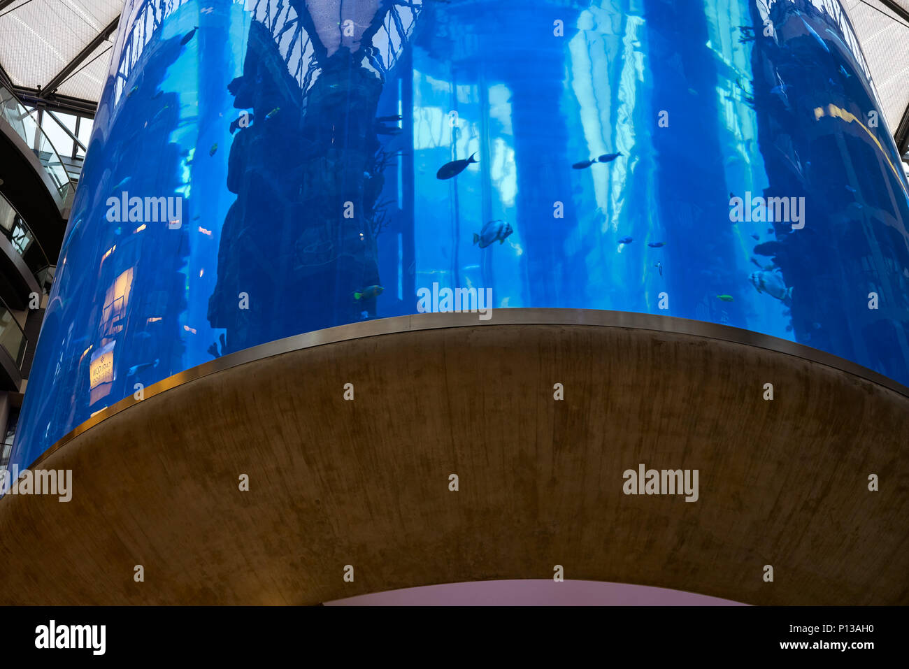 Berlin, Germany - April 5, 2017: Aquarium inside Radisson Hotel Sea Life in Berlin - Stock Image