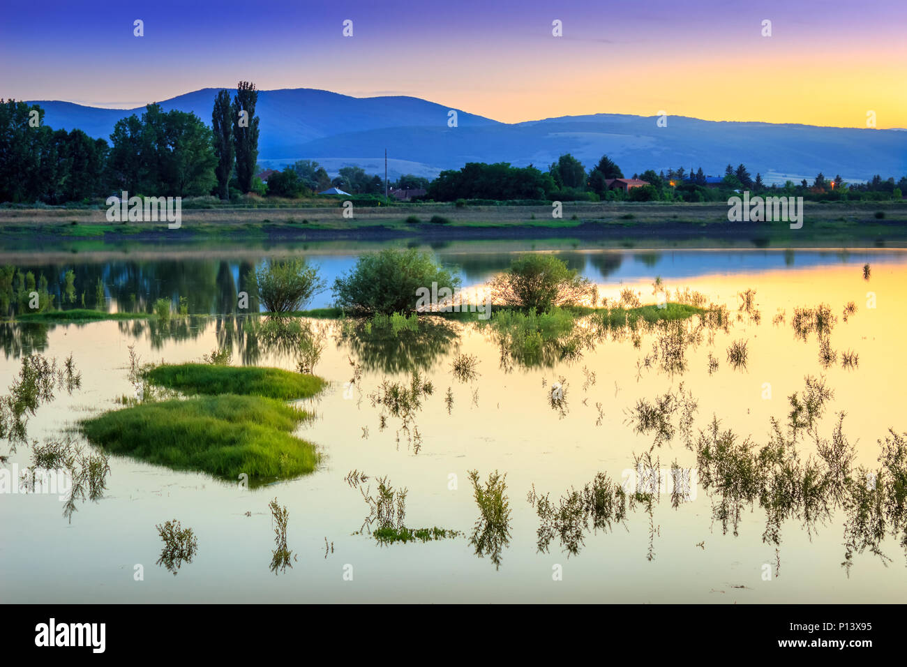 Golden hour sunset over calm, reflective lake with plants and small islands in the water and silky, glowing water, in Pirot, Serbia - Stock Image