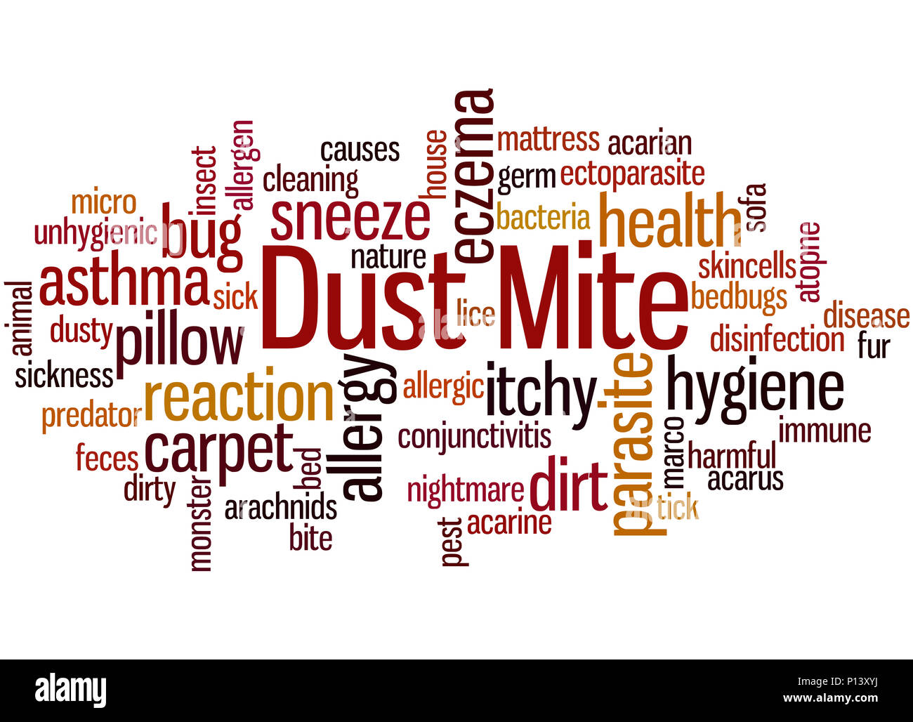 Dust mite, word cloud concept on white background. - Stock Image