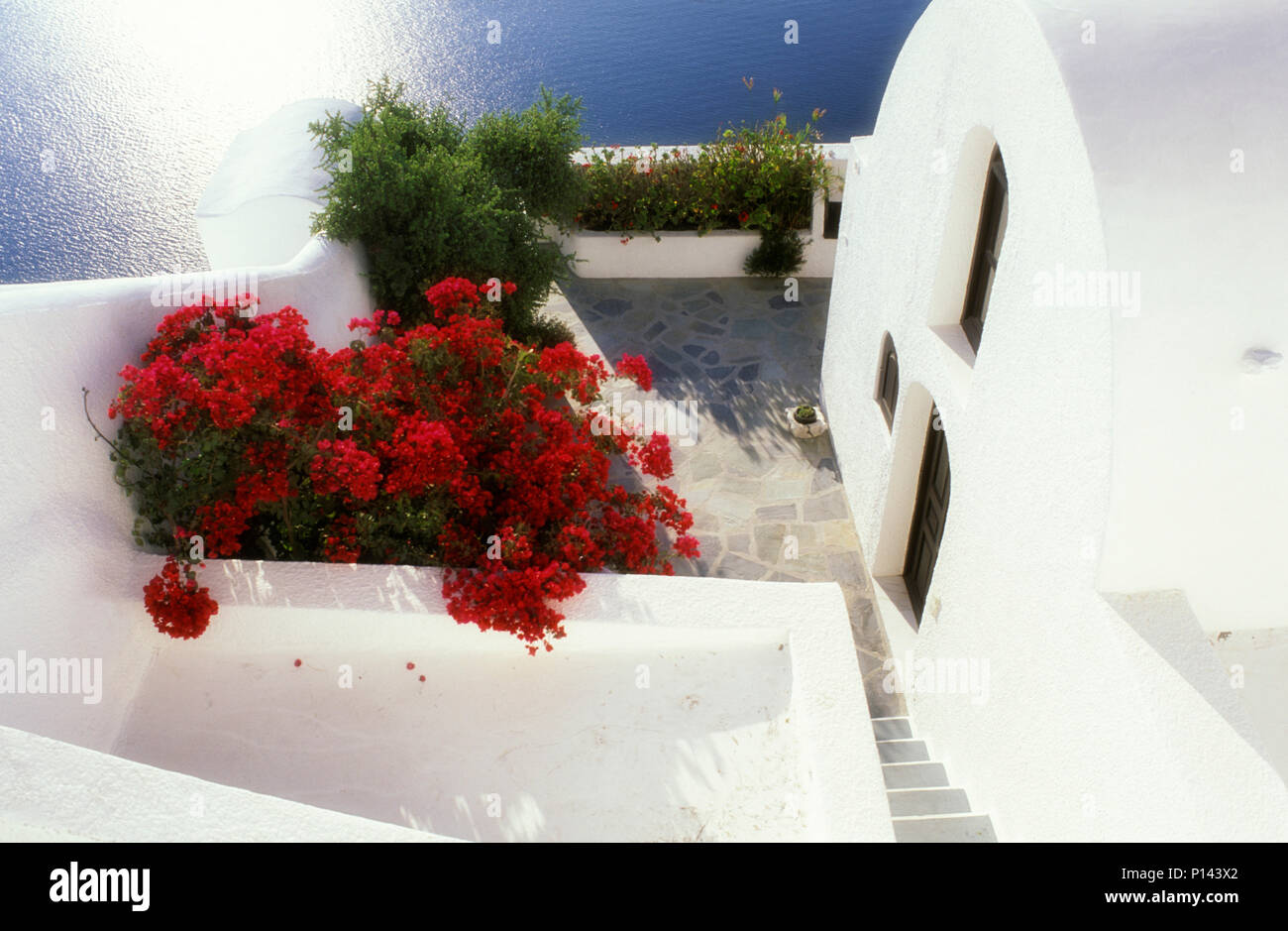 Greek Island of Thira (Santorini), vernacular white architecture in Thira with valued roof and terrace and red bougainvillea, with blue ocean, Greece Stock Photo