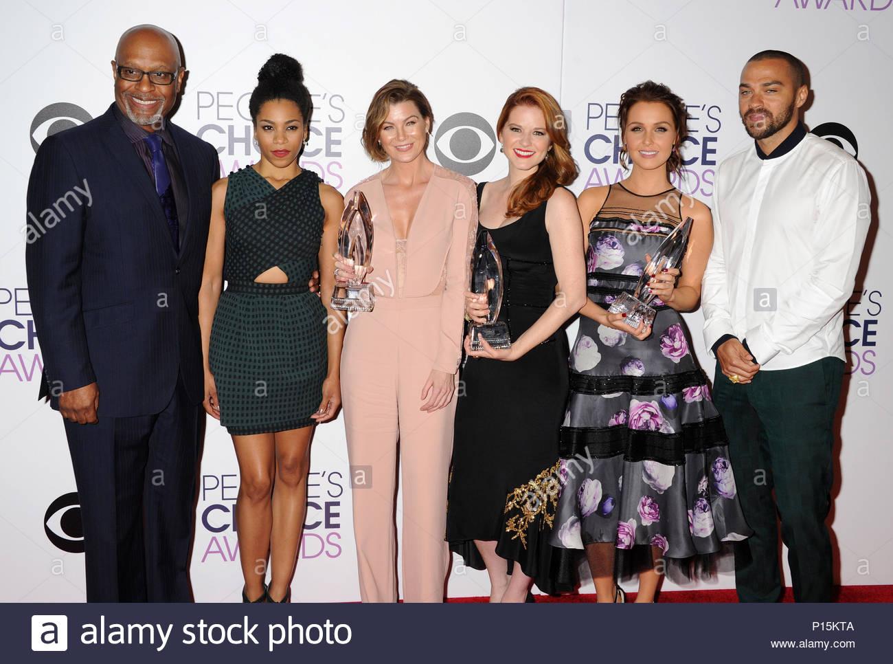 Ellen Pompeo and Grey\'s Anatomy cast. NO JUST JARED USAGE<BR/> The ...