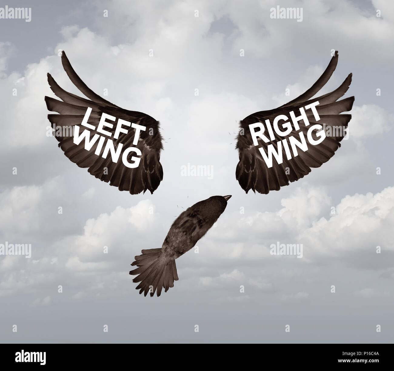 Political crisis as a destructive right wing and left wing political problem and ideology divided mentality crisis as tribal opposition. - Stock Image