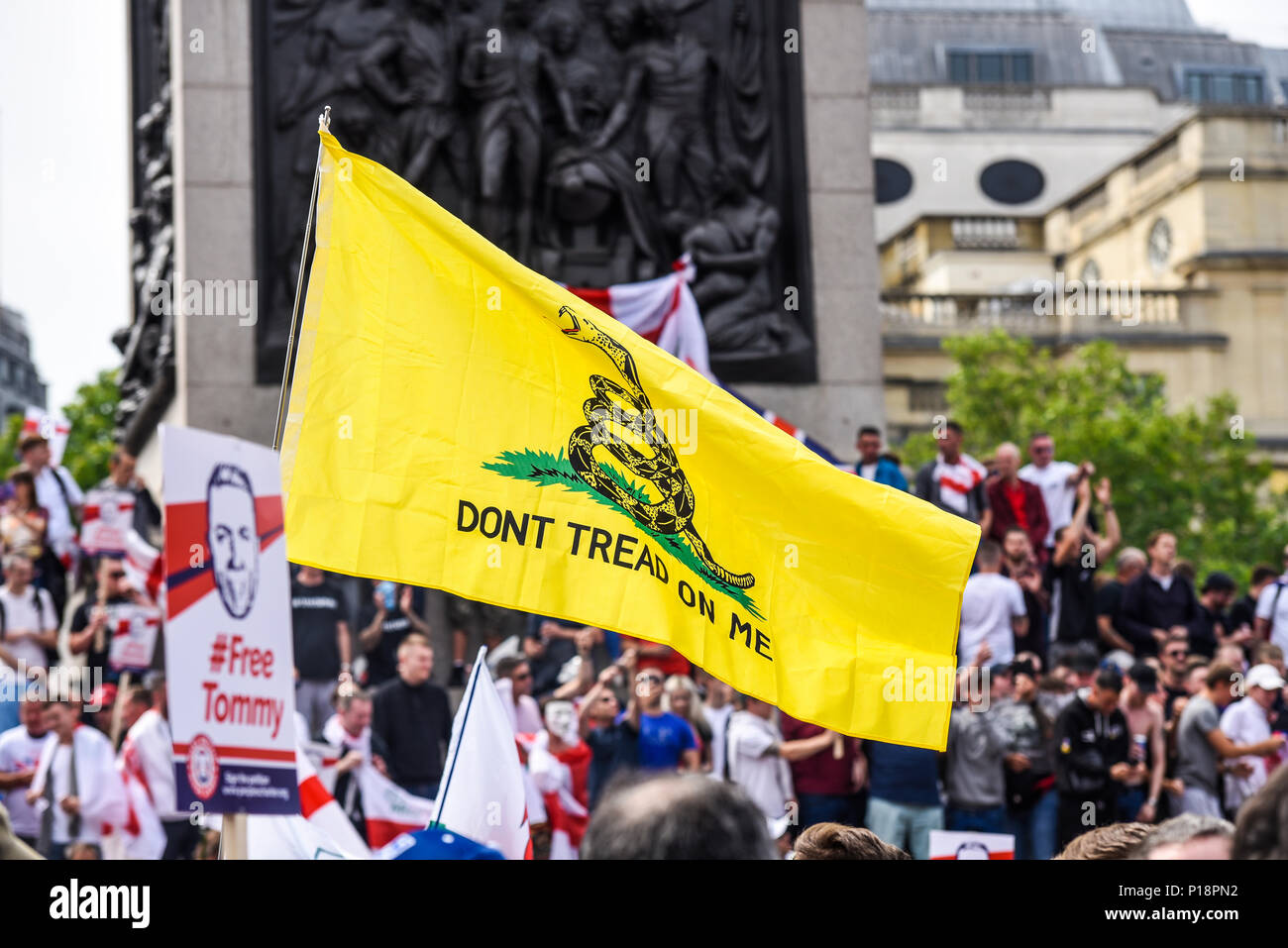 English Defence League and supporters gathered in Trafalgar Square to protest against the arrest of Tommy Robinson. Metallica Don't Tread on Me flag - Stock Image