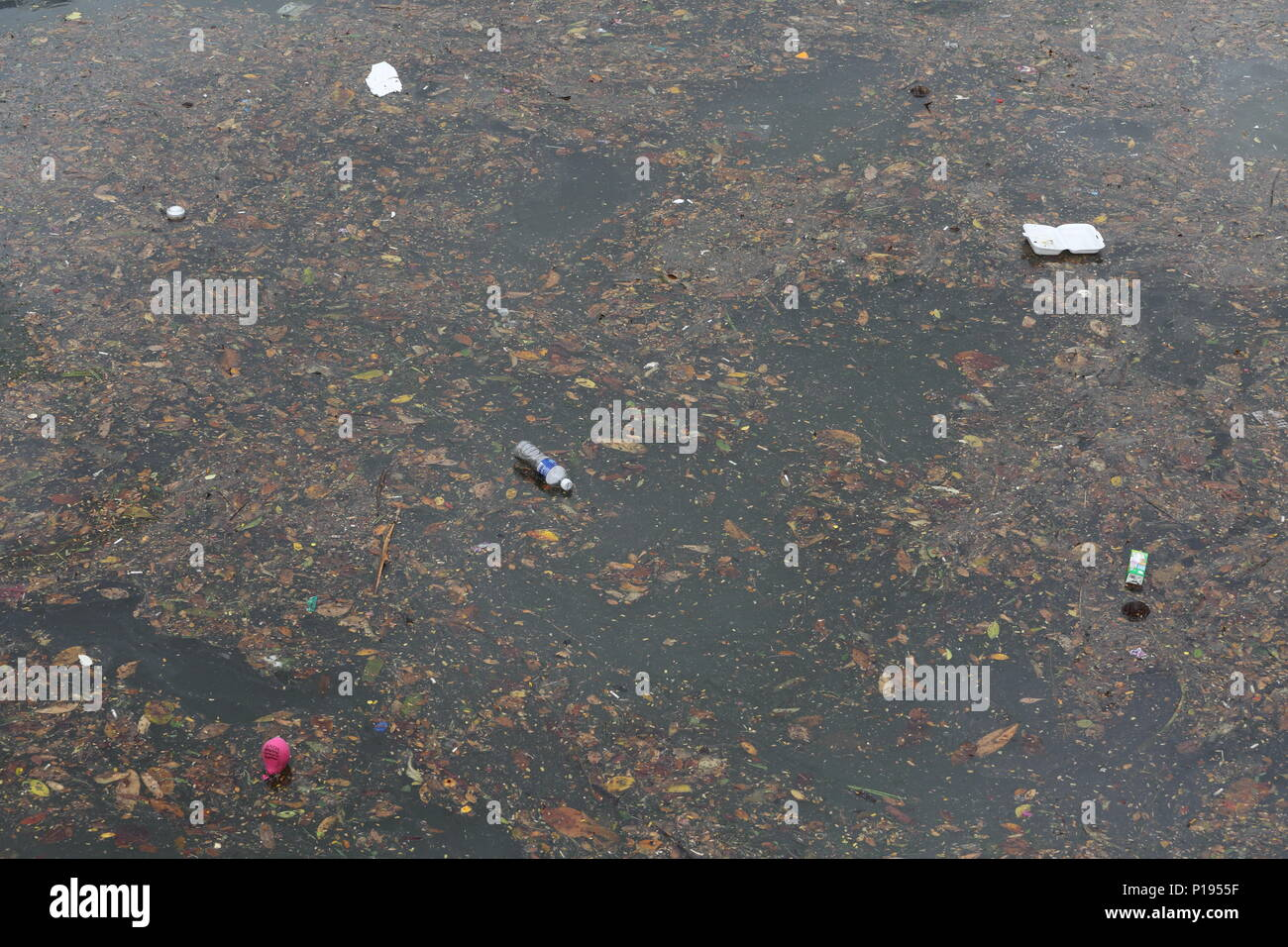 Styrofoam packet, bottle containers and plastic floating on the water causing water pollution on earth. - Stock Image