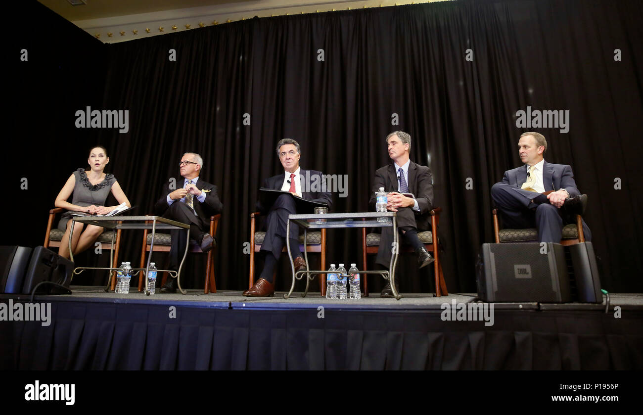 Deborah Augustin, executive director, ACE Business Office of U.S. Customs and Border Protection, left, participates in a panel discussion on automated commercial environments during the U.S. Air Cargo Industry Affairs Summit in Washington, D.C., October 4, 2016. CBP Photo by Glenn Fawcett - Stock Image