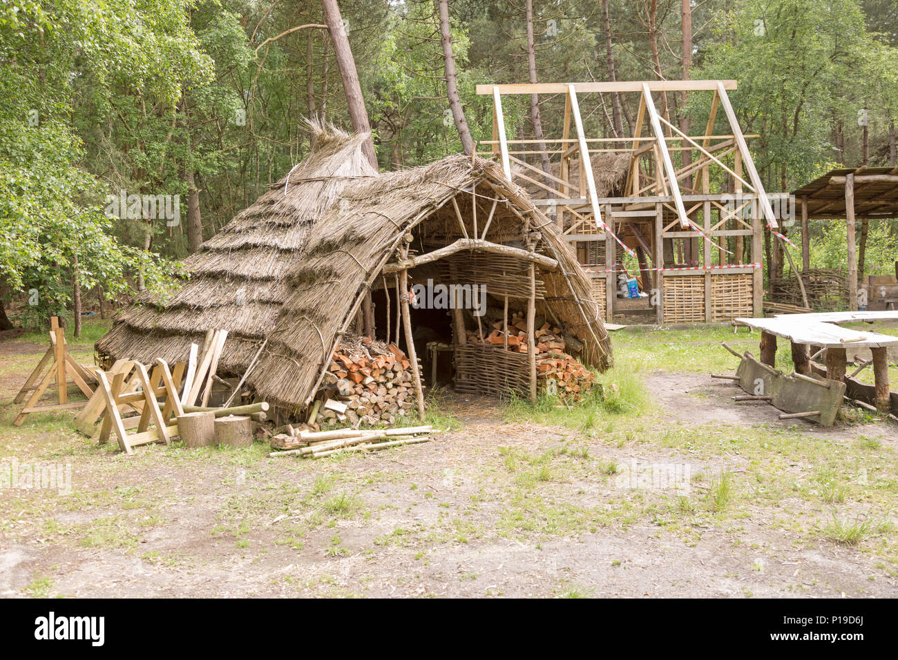 Hands on Heritage, site of reconstructed archaeological historic buildings, Tunstall forest, Suffolk, England, UK - Iron Age hut house - Stock Image