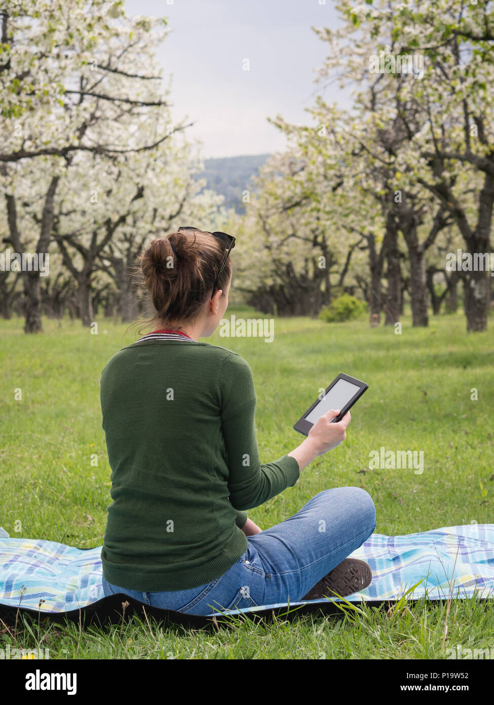 Rear view of a young woman outdoors reading on her ebook - Stock Image