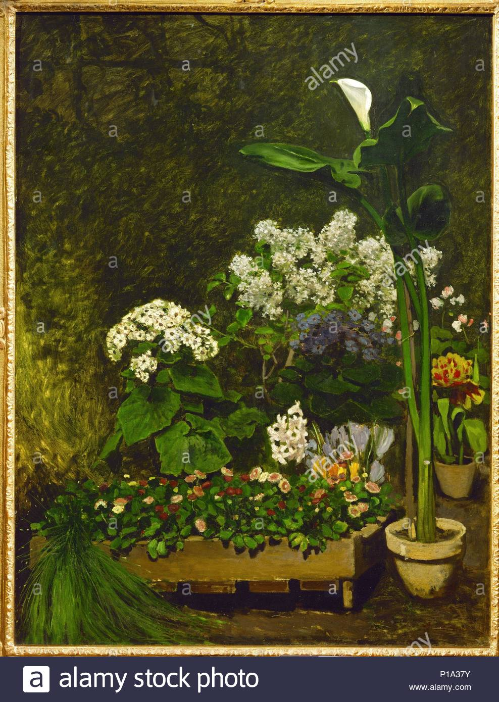 Nature morte, fleurs de printemps dans la serre-Still-life, spring flowers in a conservatory. Canvas, 130 x 98,4 cm Formerly in the collection of painter Max Liebermann. Author: Pierre Auguste Renoir (1841-1919). Location: Kunsthalle, Hamburg, Germany. - Stock Image