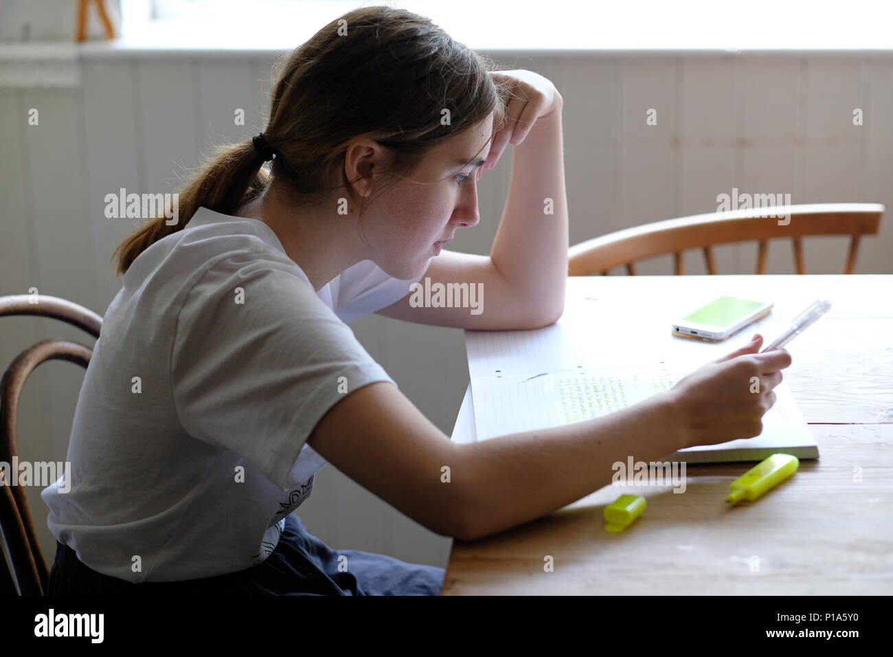 An 18 year-old girl studying for A levels on the kitchen table - Stock Image