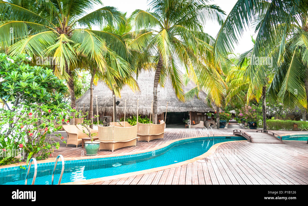 Tropical swimming pool on Maldives. Infinity pool with palms in ...