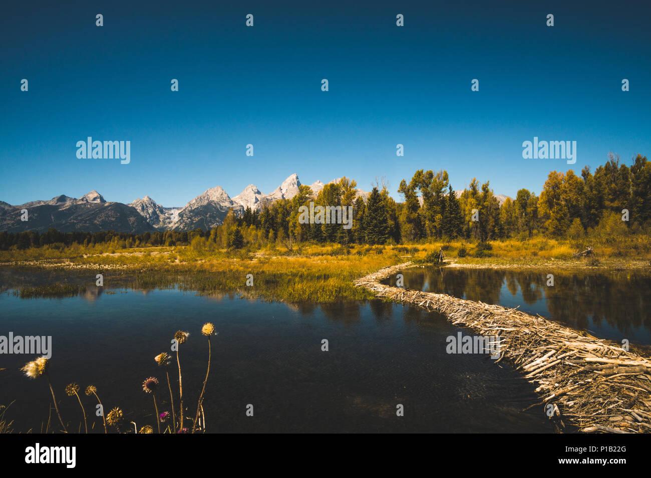 Teton Dam Stock Photos & Teton Dam Stock Images - Alamy
