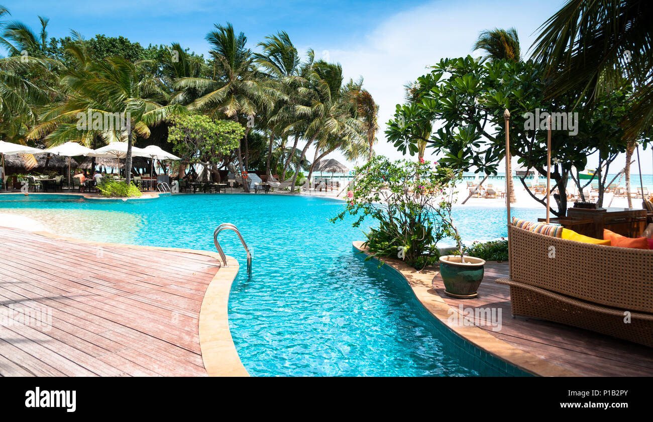 Tropical swimming pool on Maldives. Infinity pool with palms ...
